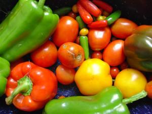 Vegetables plant protein detox diet